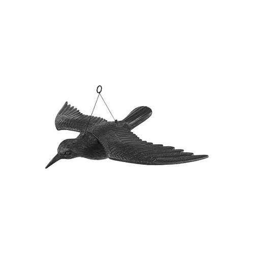 Kruk z rozpostartymi skrzydłami, odstraszacz ptaków