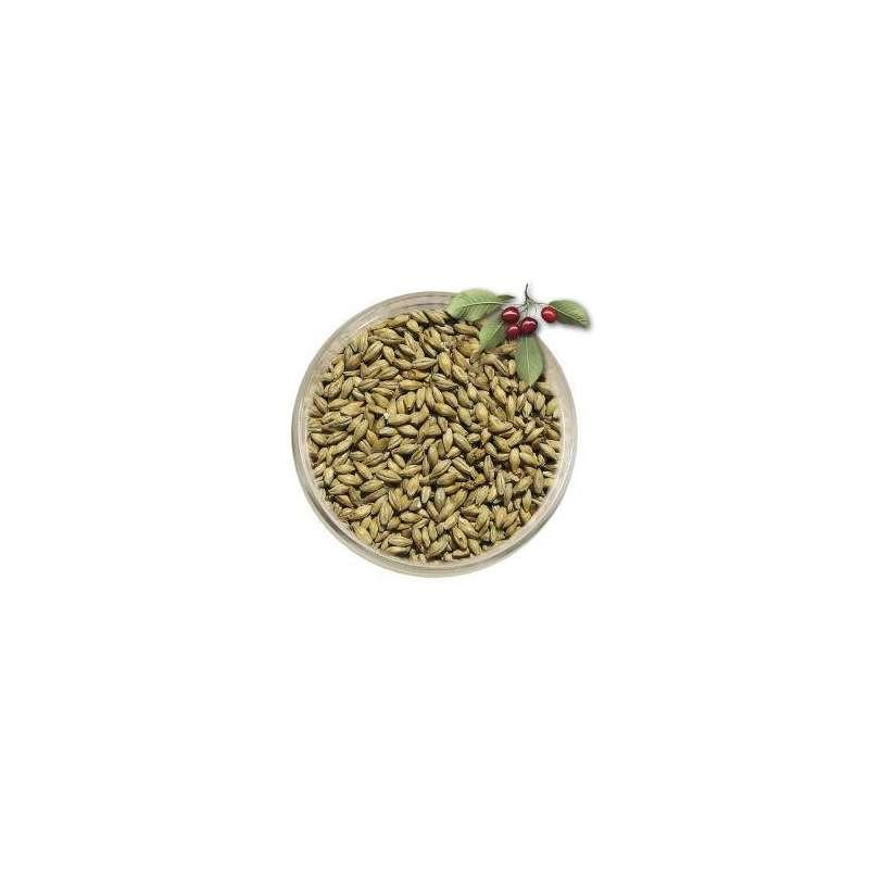 Słód wędzony drewnem wiśni - Wiking Malt 1kg