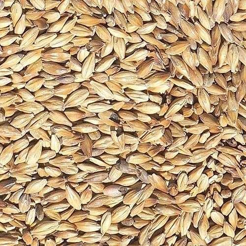 Słód Pale Ale MARIS OTTER 4-5 EBC 1 kg - Fawcett