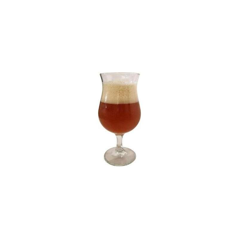 Zestaw surowców (słody) Belgian Pale Ale 12,5 Blg 20 litrów piwa