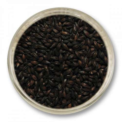 Słód czekoladowy ciemny (1100-1300 EBC) 1 kg