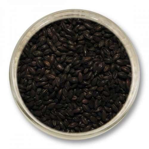 Słód barwiący (1300-1600 EBC) 1kg