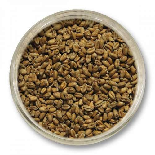 Słód pszeniczny Viking Malt (3-6 EBC) 5kg