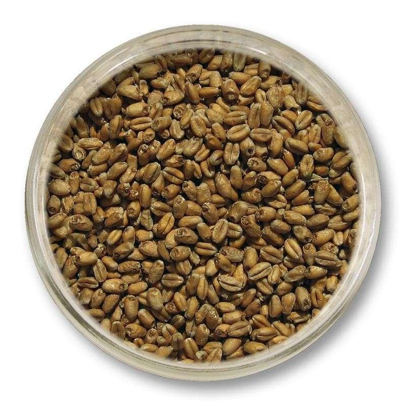 Słód pszeniczny Viking Malt (3-6 EBC) 1kg