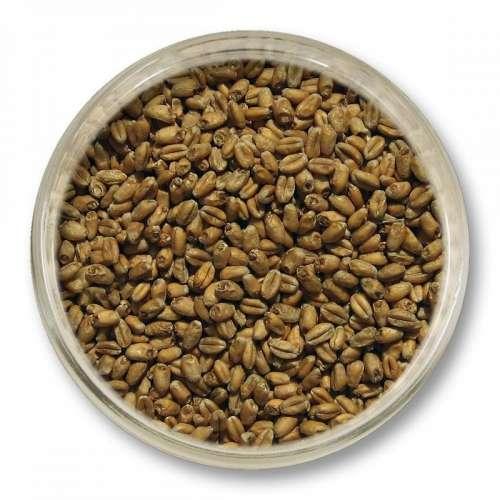 Słód pszeniczny Viking Malt (3-6 EBC) 25kg